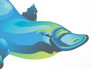Melbourne Water Branding Illustrations